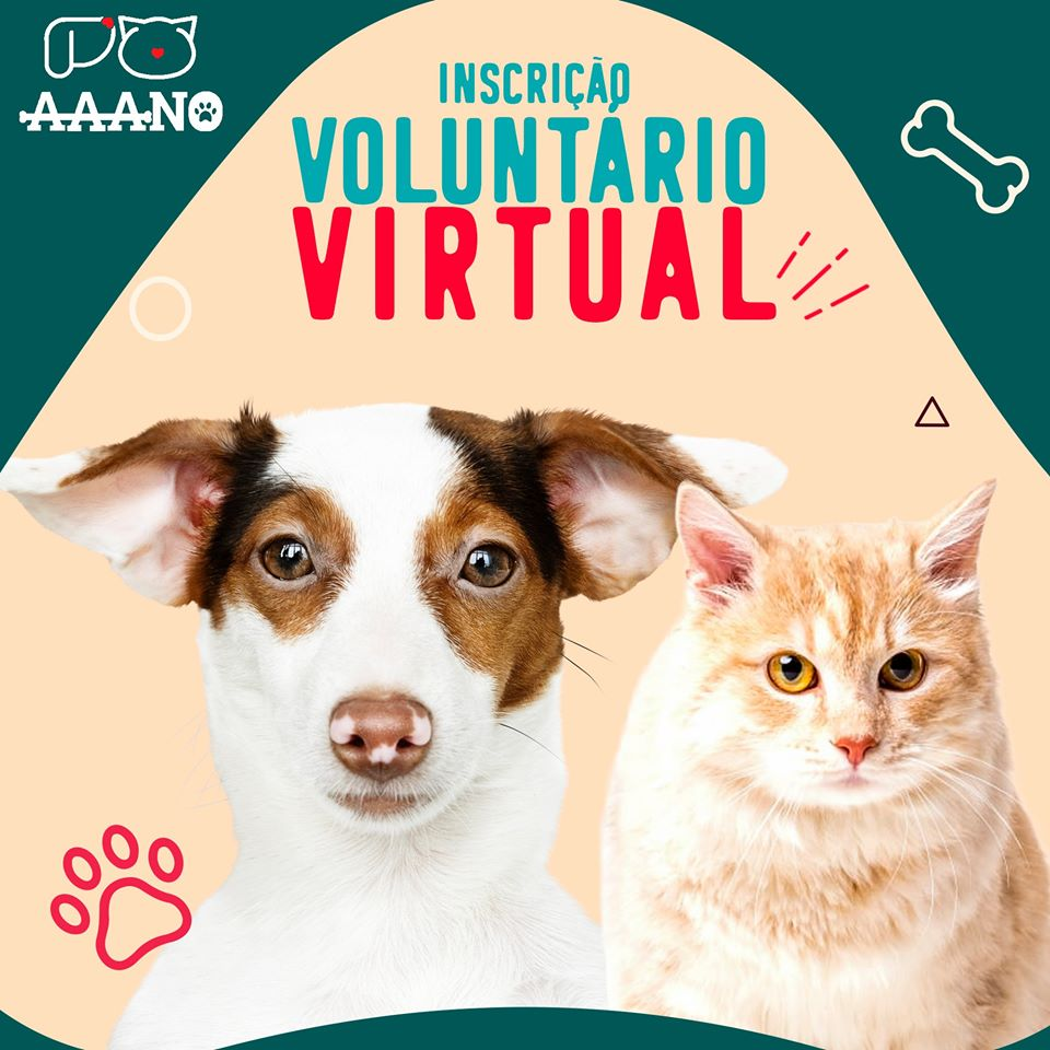 Voluntário Virtual